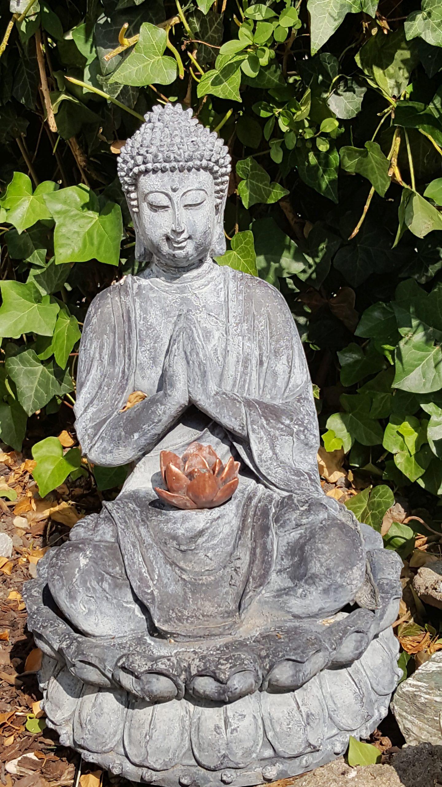 tuin boeddha bij stilteochtend